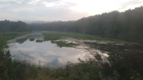 Huron River mist 1
